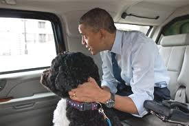 Obamabocar