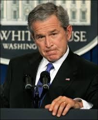 Bush a